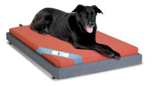 letto per cane con doghe in faggio